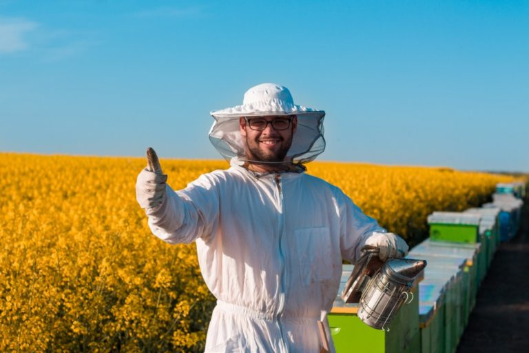 beekeeper working in the field